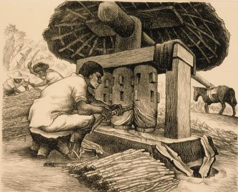 "Grinding Sugar Cane, from the portfolio, ""Mexican People: 12 Original Lithographs by the Artists of El Taller de Gráfica Popular"""
